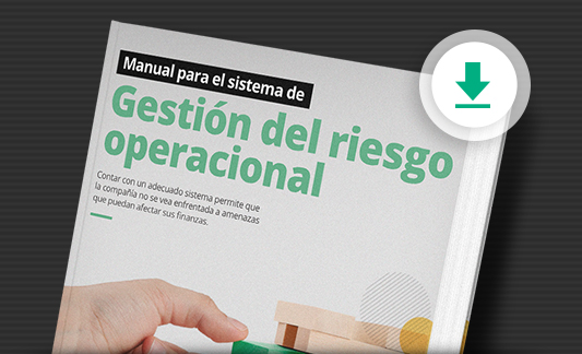19_manual_sistema_gestion_riesgo_operacional