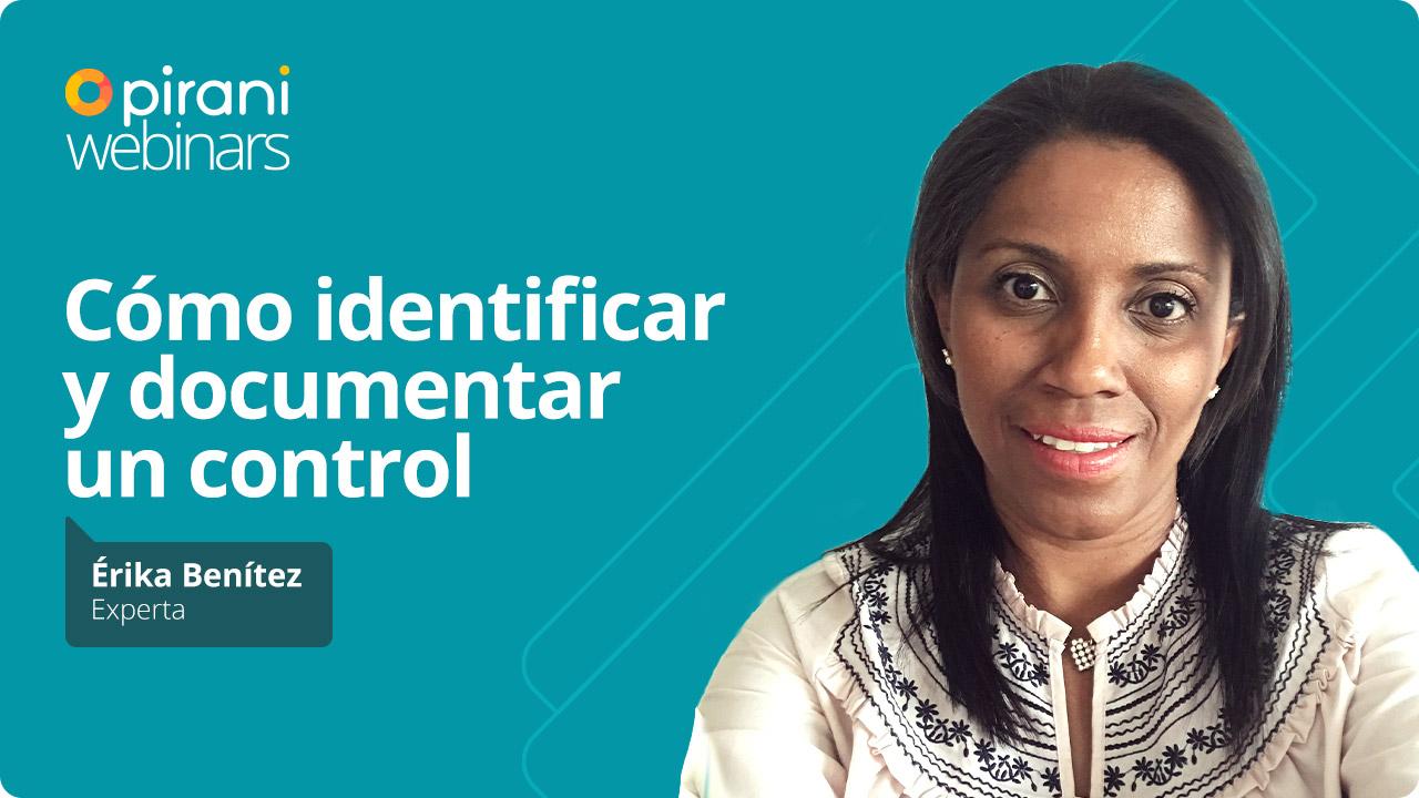 w_identificar_documentar_control (1)